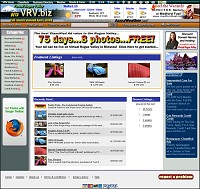 Web Hosting / Domain Name Registration